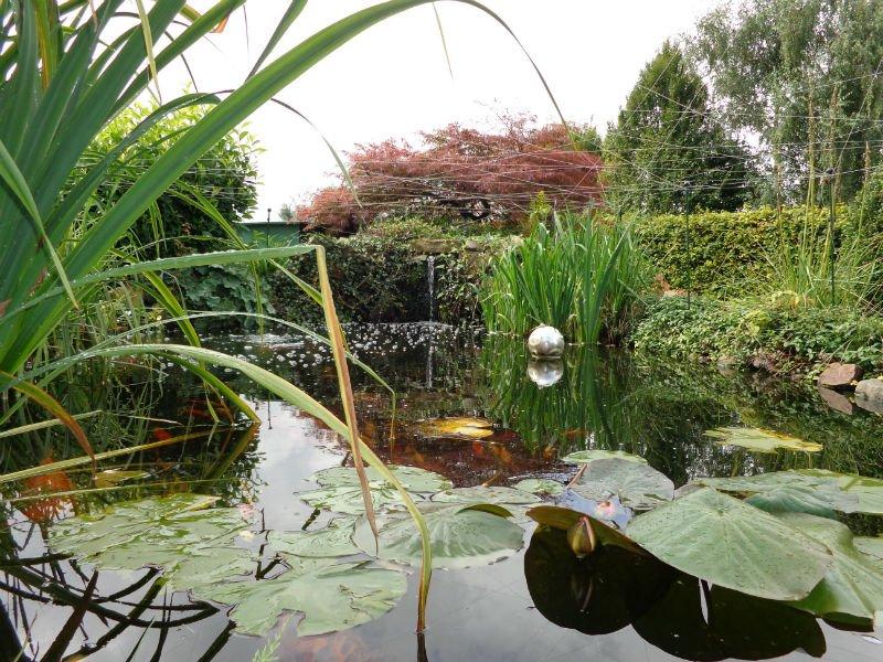 Création d'un étang